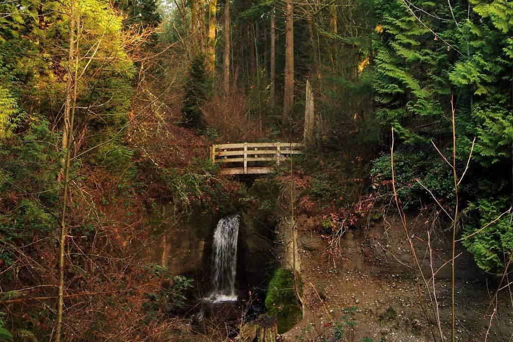 Upper Weowna Falls