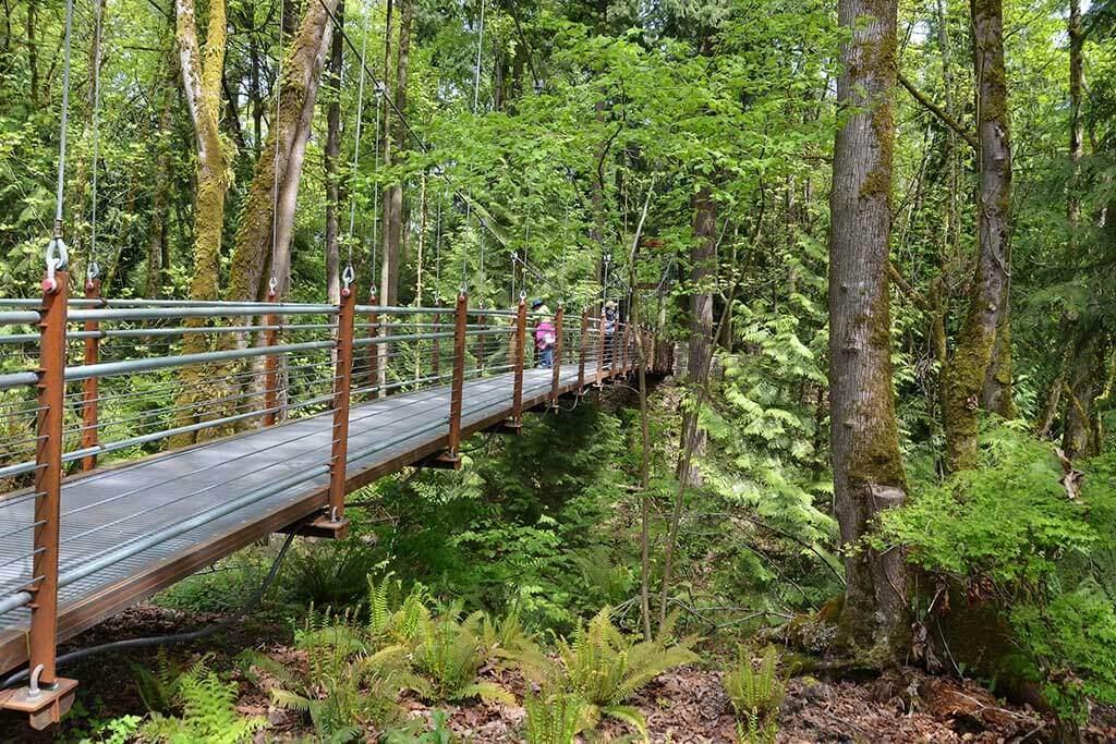 Bellevue Botanical Garden Trail