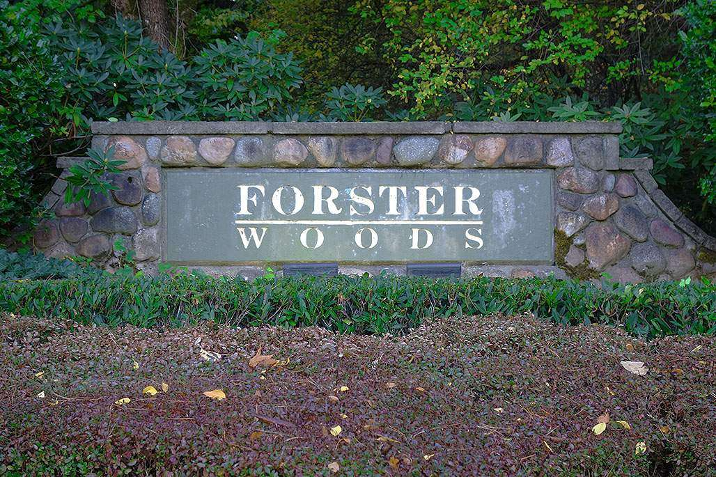 Forster Woods