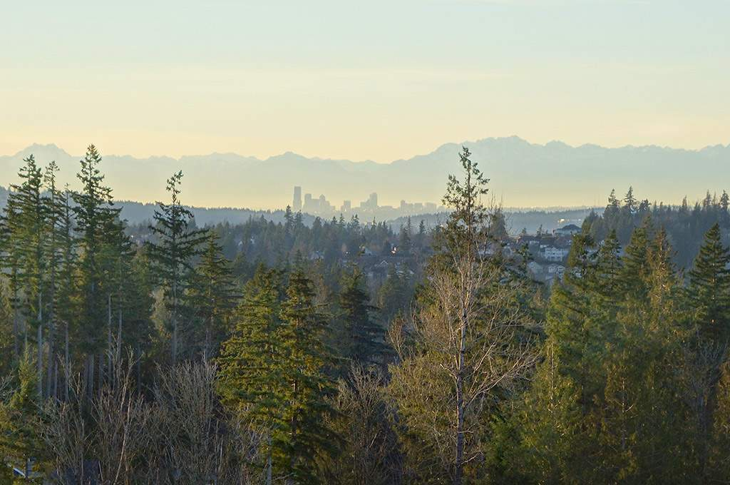 View of Seattle from Grandview Park