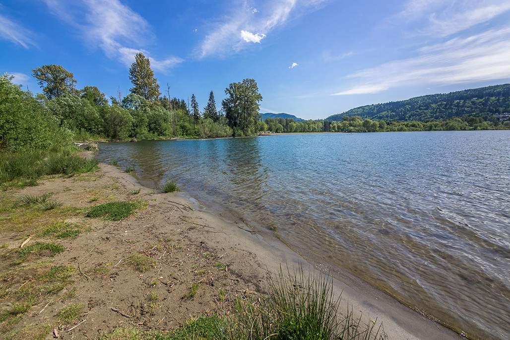 Lake Sammamish Beach