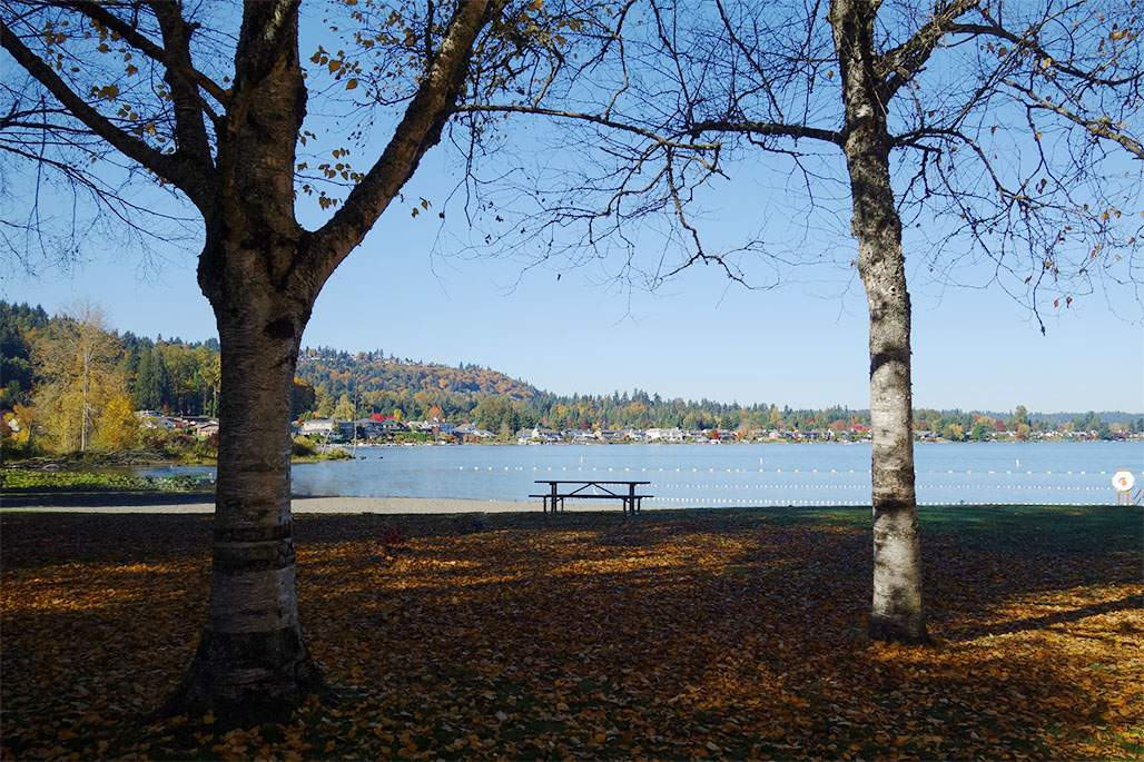Lake Sammamish Beach