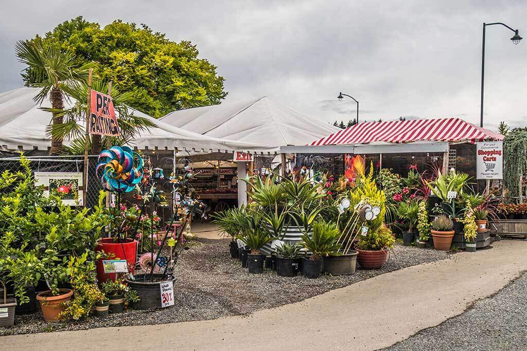 Newcastle Fruit & Produce Stand