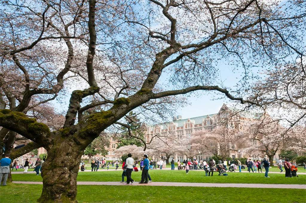 seattle-university-of-washington