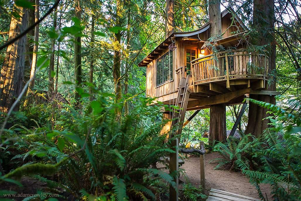 TreePoint House
