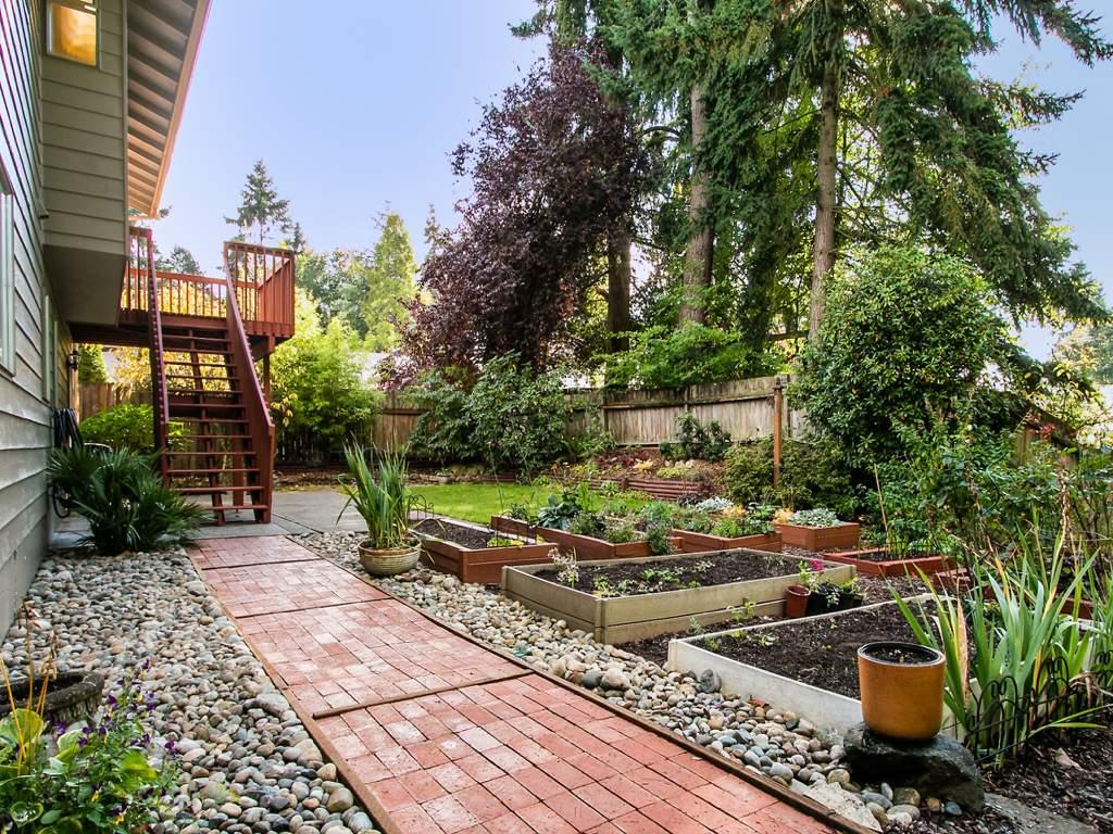 8-Backyard
